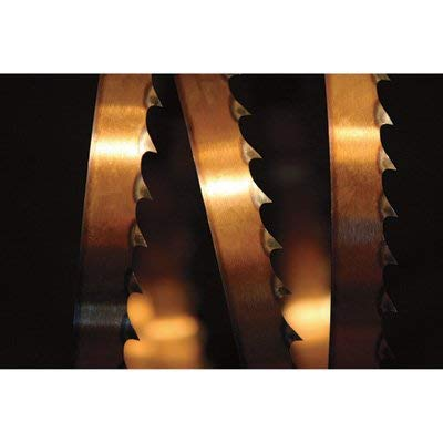 Norwood Sabretooth Band Saw Blades - 167in.L, Pack of Ten