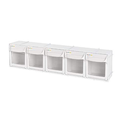 Schüttengehäuse mit 5 Schütten Kleinteilemagazin Kipp Sortimentskasten Sortierbox mit griff 5 Schubladen FO-605 Weiß