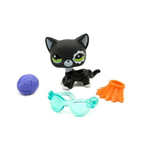 Littlest Pet Shop Collection LPS Shorthair White Black Kitty Cat 3 Accessories
