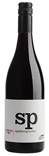 Spätburgunder Aufwind tr. 2016 Thomas Hensel, trockener Rotwein aus der Pfalz