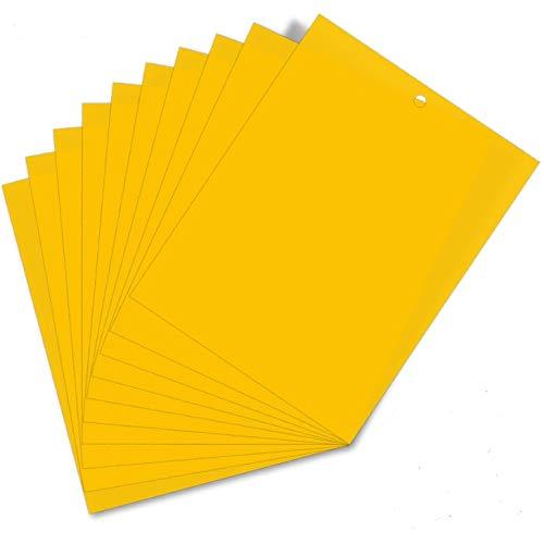 HellDoler Pièges à Insectes,50 Pièces Papier Collant Double