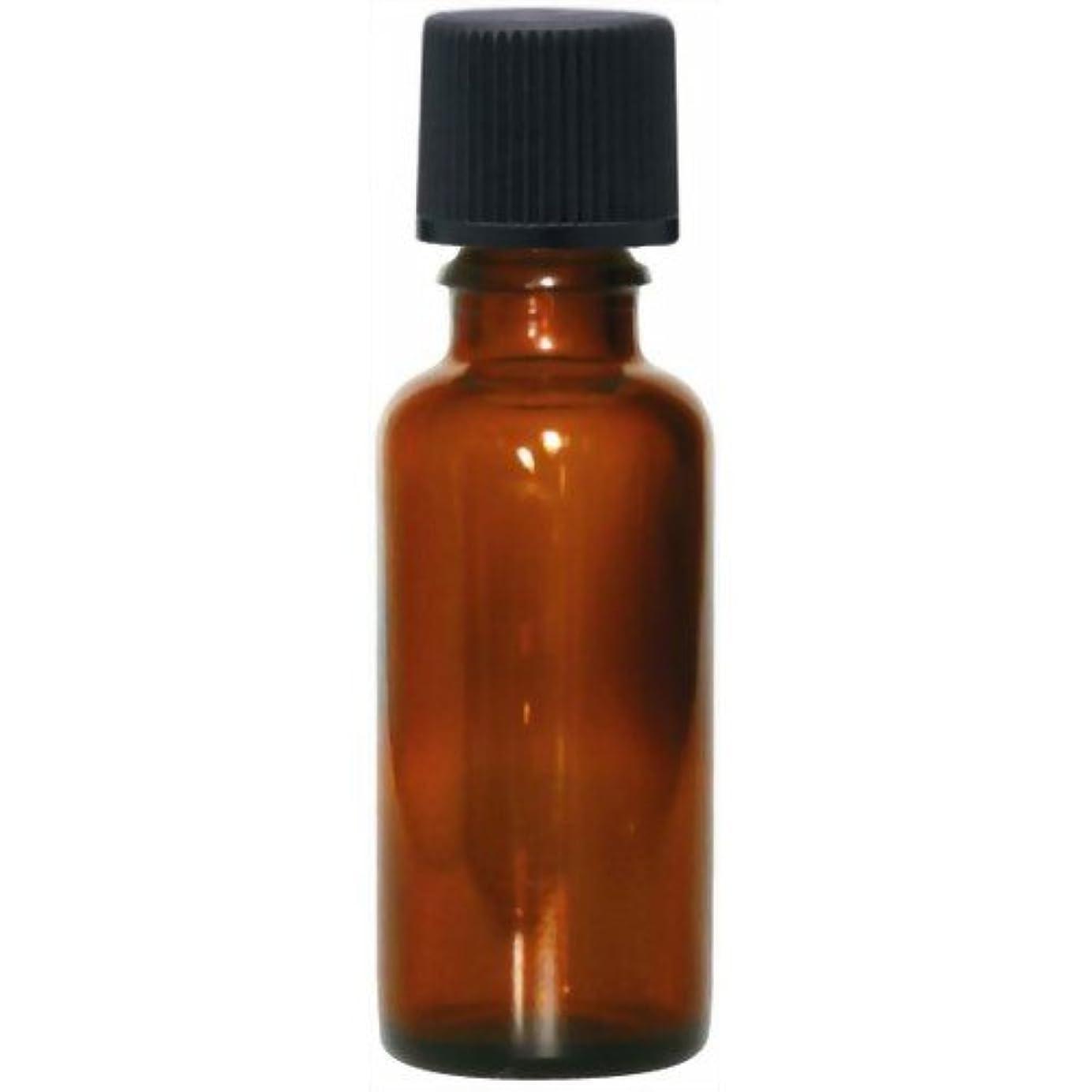 アライアンス電気の宇宙飛行士茶色遮光瓶30ml(黒キャップ)