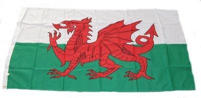 Fahne / Flagge Wales NEU 90 x 150 cm Flaggen
