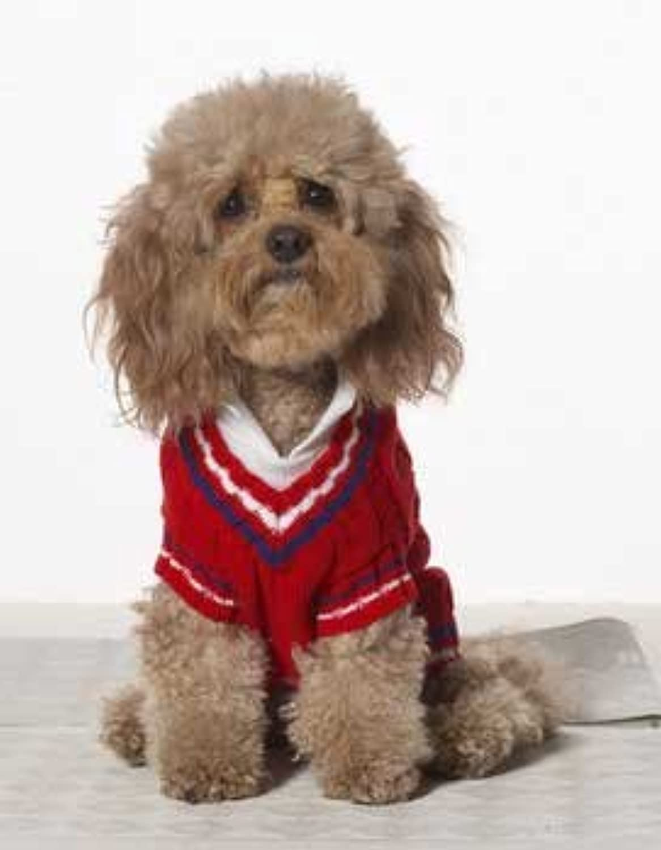 Preppy Tennis Sweater   SM Red
