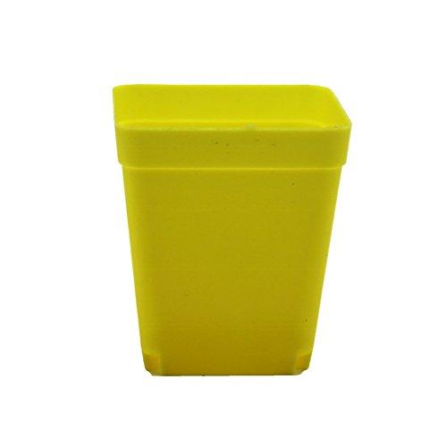 Adhere To Fly Lot de 10 pots de fleurs carrés en plastique pour plantes succulentes 6 cm (jaune)