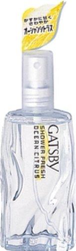 GATSBY(ギャツビー)『 シャワーフレッシュ オーシャンシトラス』