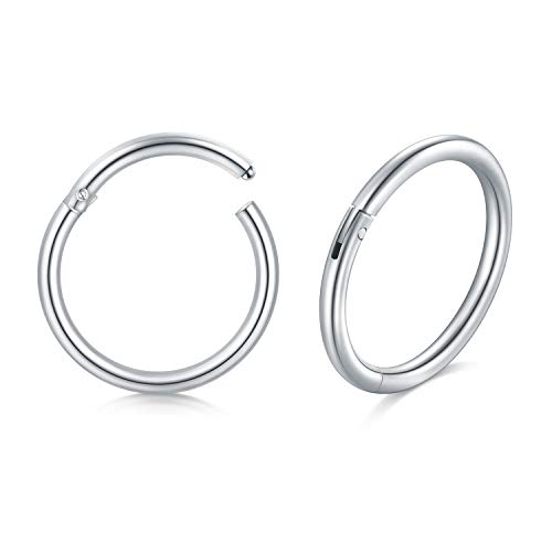 Briana Williams 1 Pair Silver Hinged Ring Hoop Clicker 20G 8mm Nose Lip Sleeper Tragus Helix Earring Piercing Stainless Steel
