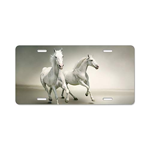 Hunter jumper horse vanity  license plate car truck SUV tag black and grey