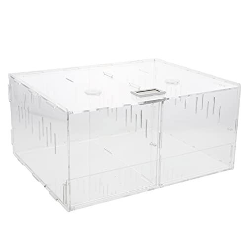 STOBOK Caja de Cría de Reptiles Pequeño Terrario Acrílico Transparente Almacenamiento de...