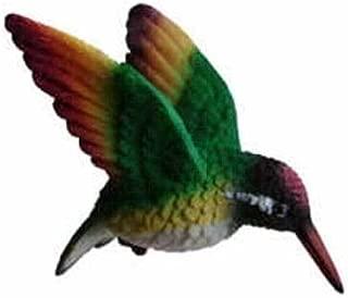 Clark Collection CC52039 Rainbow Hummingbird by Clark Collection