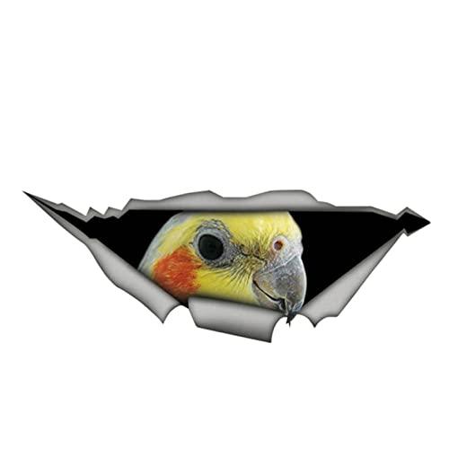 ZQZL Precioso Cockatiel Parrot Etiqueta engomada del automóvil 3D Decal de protección Solar Auto Accesorios de decoración PVC, 13 cm * 4 cm