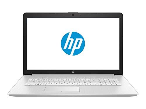 HP 17 Business Laptop - Linux Mint Cinnamon - Intel Quad-Core i5-8265U, 8GB RAM, 1TB SSD, 17.3' Inch HD+ (1600x900) Display, SD Card Reader, DVD+-RW Burner