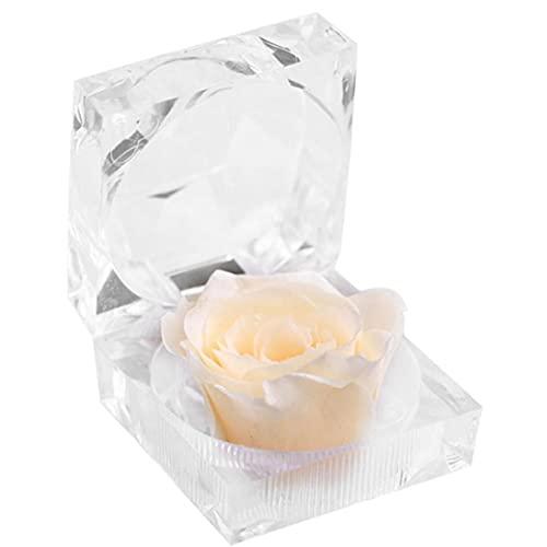 Flor eterna caja transparente titular del anillo del cristal romántico de Rose...