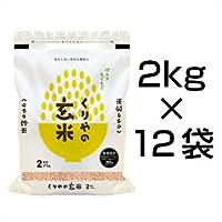 令和2年(2020年)  【玄米】栃木県産 なすひかり 令和2年産【2月のやりくり上手】 24kg 【米袋は真空包装】