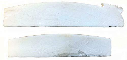 Terrapin Trading Ltd Ersatz Sitar Top Mutterteil Knochen 2Pc Ersatzteile Indian Indien Ersatzteile