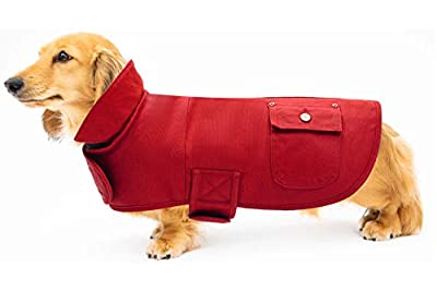 Ctomche cotton dog vest,Canvas Dog Winter Coat,Outdoor Sport Dog Jacket Winter Warm,Winsproof Dog Coat Outdoor Clothing Perfect for Dachshunds Red-M