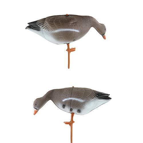 oshhni 2Pcs Outdoor Goose Hunting Decoy Full-Body Turkey Scarecrow Crow Deterrent