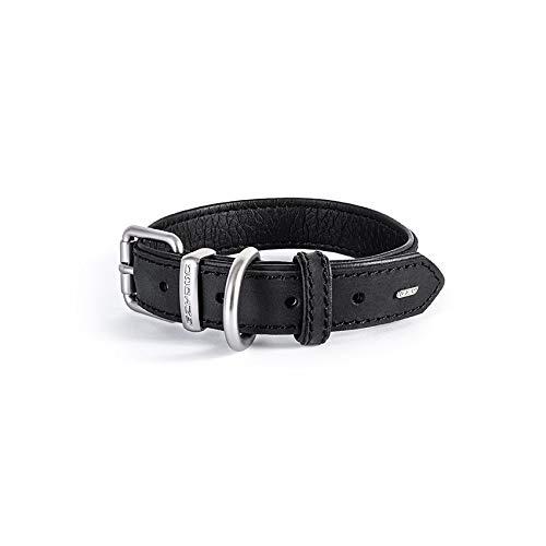 EzyDog Oxford Hundehalsband Leder- Premium Lederhalsband - Hunde Halsband für Kleine und Große Hunde, Naturleder, Verstellbares, Gepolstertes (L, Schwarz)