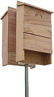 BestNest Triple-Celled Double Bat House Kit, 500 Bats