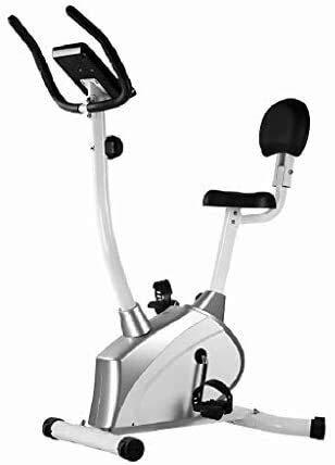 BZLLW Cyclette, Recumbent Bike Series Cyclette Fitness Bike Silenziose Fitness Home Bicicletta Che Fila Palestra Biciclette Magnetica Di Controllo Auto Al Coperto Orizzontale