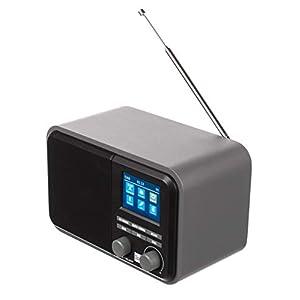 Dual DAB 51 Digitalradio mit Akku und Bluetooth, DAB+ / UKW, MP3, USB-/SD-Anschluss, Farbdisplay, AUX-In, Senderspeicher, Teleskopstabantenne, Grau