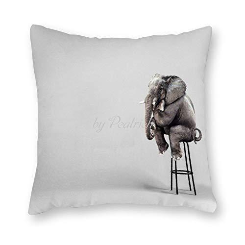Viowr22iso Funda de almohada divertida con diseño de elefante sentado circo animal FramHouse decorativo funda de cojín para decoración del hogar, 55,8 x 55,8 cm