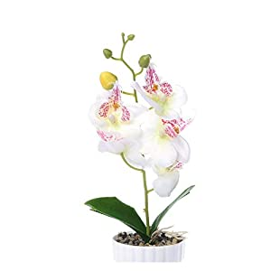 KEHUITONG SJLS Artificial Plastic Bonsai Fake Plants Flower Wedding Home Decor Garden Hotel Potted Artificial Fake Plastic Bonsai Plant Tree