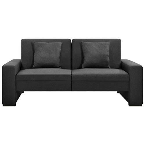 Tidyard Schlafsofa Sofabett Klappsofa Sofa Sofa 2 Sitzer mit 2 Kissen Couch, Dunkelgrau