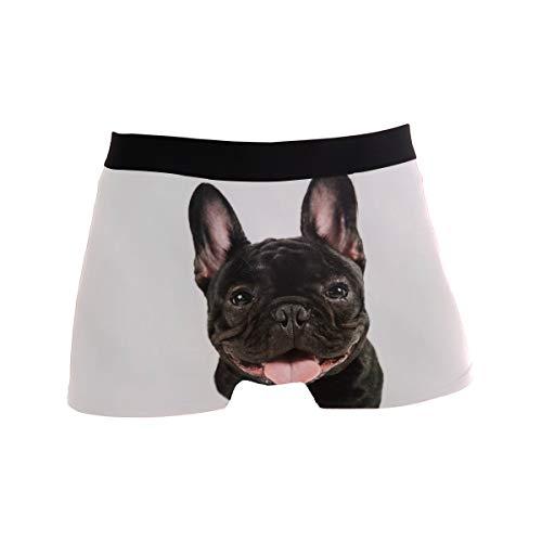 Herren Boxershorts, Bulldogge, niedliche Unterwäsche für Jungen und Jugendliche, Polyester, Elastan, atmungsaktiv Gr. L, mehrfarbig
