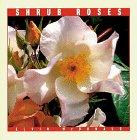 Shrub Roses (Rose Garden Series)