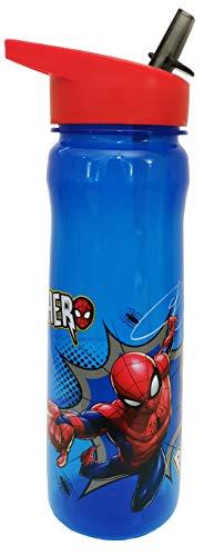 MARVEL 1325 1698 Spider-Man Hero Reusable Water Bottle, polypropylene, Blue and red, 600ml