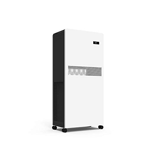 Lour Smart with air Purifier,Hepa Air Purifier,True HEPA,Active Carbon Filters, Air Purifiers for Allergies/Smoke - Removes 99.97% Dust, Pollen, Pet Dander