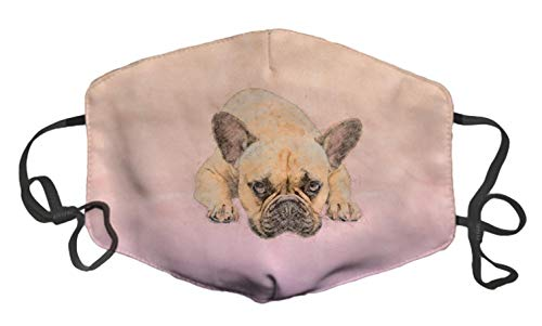 French Bulldog Frenchie Dog Fashion Face Decorative Adjustable Ear Loops Washable Reusable Cotton Facial Decorations for Men Women Unisex