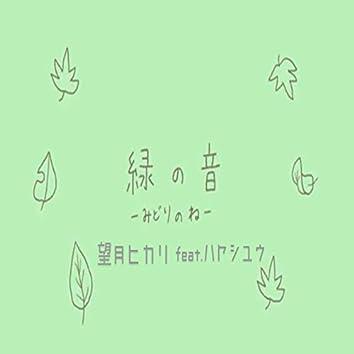 The sound of green. (feat. Yu Hayashi)