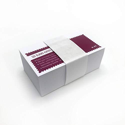 Juego de 100 tarjetas pequeñas en blanco 9 x 5 cm – DIY I tarjetas de visita, etiquetas de regalo, tarjetas de notas I para personalización I dv_412