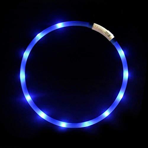 LED光る首輪, USB 再充電 ドッグ カラー 12個のLEDライト 500m先から目視可能 ペット 夜間 安全性 3種類のライトモードを搭載 防水 スモール ミディアム ラージ 複数色ご用意 (青)