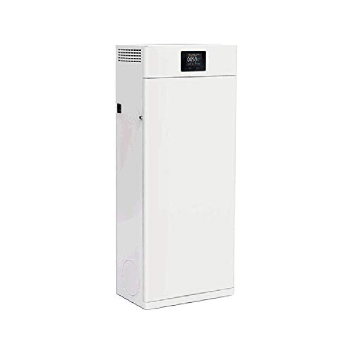 Lour Air Purifier HEPA Filter and ionizer, air Purifier for The Home, Capture Allergies, dust, Pollen, Smoke, pet Hair, etc. Ideal for Home, Office