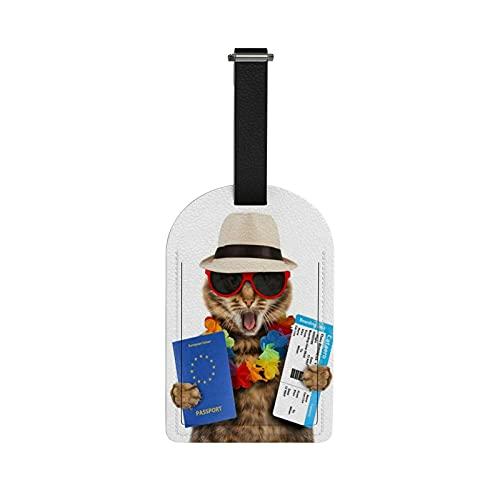 Redecor - Etichette per bagagli, motivo: gatto divertente con passaporto compagnia aerea, etichette per bagagli, etichette identificative, etichette per borsetta, valigie per valigie, 1 pezzo