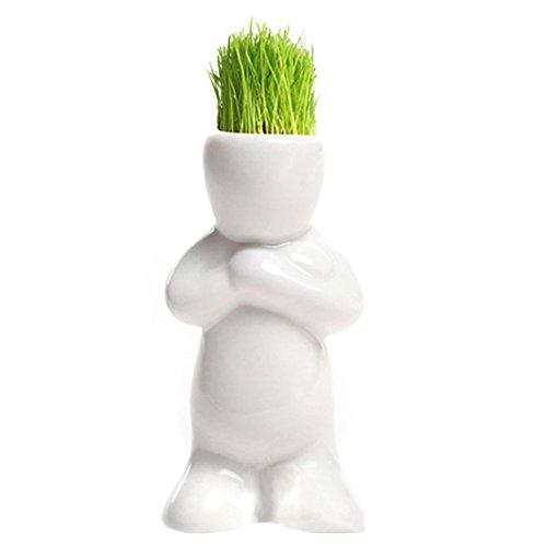 SimpleLife Roman Bonsai Kopf Gras Puppe Haar Weiß Faul Mann Verließe Pflanze Garten DIY Mini