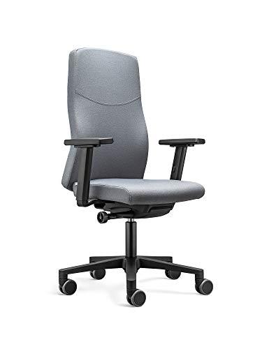 LÖFFLER Ergonomischer Bürostuhl / Drehstuhl BASIC mit verstellbarer Sitzhöhe, anpassbaren Armlehnen, Rückenlehne mit Gewichtsautomatik (Graphit)