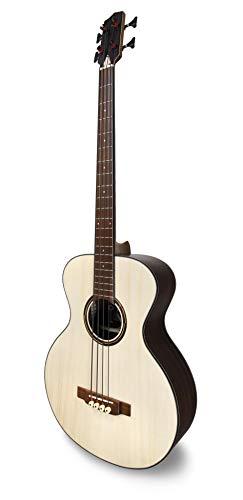 APC Instruments BG300 PSI Bass Gitarre