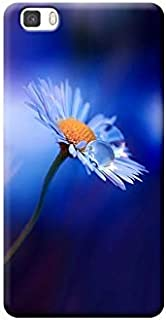 Amazonit Huawei P10 Lite Cover Blu