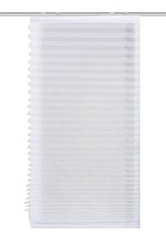 HOME WOHNIDEEN 78707 | Plissee-Rollo Plain | transparenter Voile, in verschiedenen Breiten, Farbe: Weiß (140 x 120 cm)