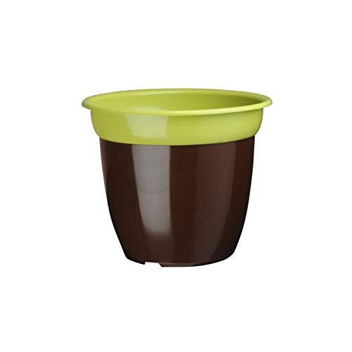 CEP Agriculture Lot de Pots de Fleur Bicolore Anis/Chocolat 14 cm