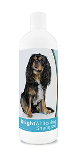 Healthy Breeds Dog Whitener Shampoo for Cavalier King Charles Spaniel - for White, Lighter Fur – Over 150 Breeds – 12 oz - with Oatmeal for Dry, Itchy, Sensitive, Skin – Moisturizes, Nourishes Coat
