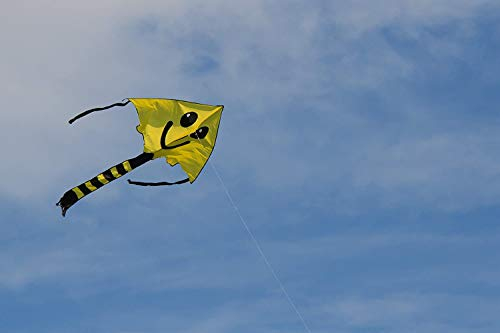 Weifang New Sky Kites Large Easy Flyer Big Smiley Face Kite 7 X 4 Ft with String and Handle, Super Easy to Fly