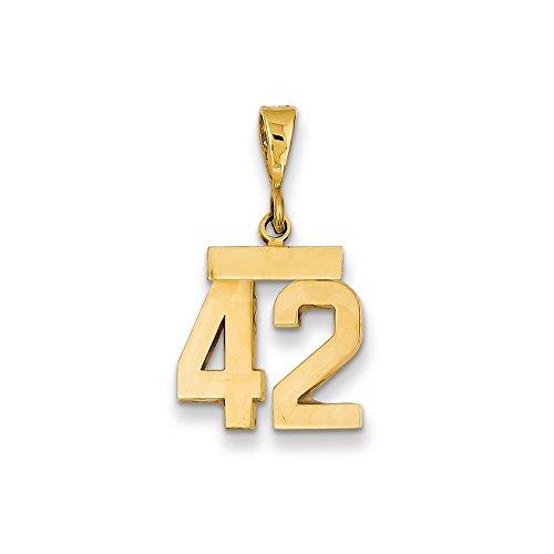 Saris and Things 14k Oro Amarillo Pulido pequeño número 42 Charm