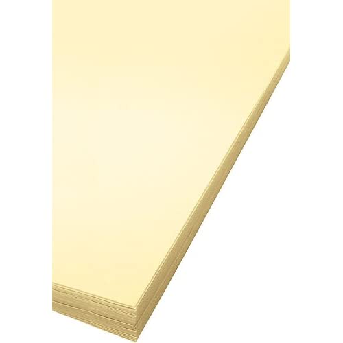 Bee Paper Oak Tag Board Pack 100 Sheets per Pack 18-Inch by 24-Inch