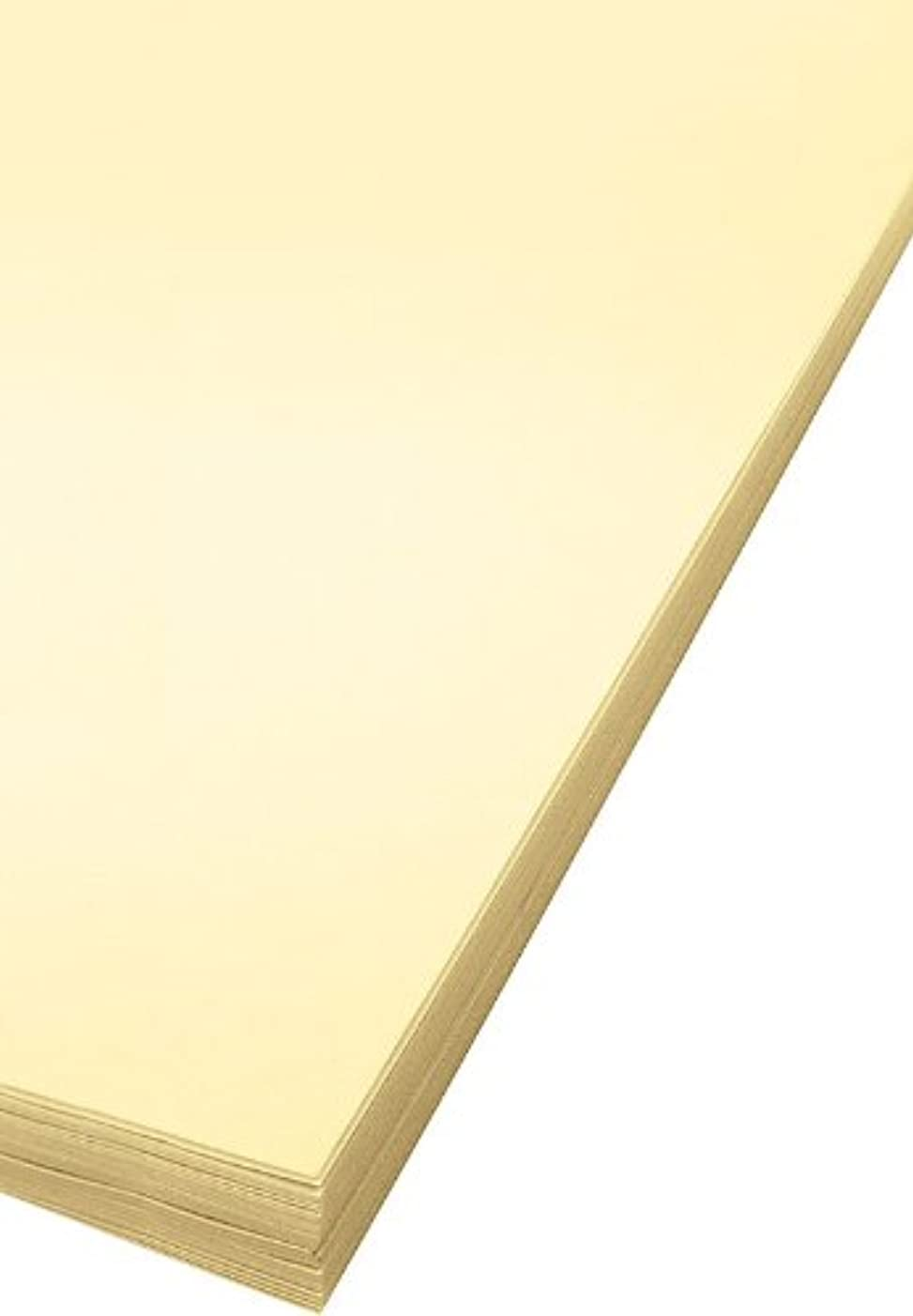 Bee Paper Oak Tag Board Pack, 18-Inch by 24-Inch, 100 Sheets per Pack