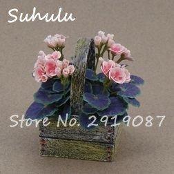 Vistaric 100pcs Rare Mini Geranium Graines Vivaces Belle Fleur Graines Pelargonium Peltatum Graines disponibles bonsaï en pot mélange couleurs